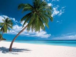 Доминикана - экзотическое очарование