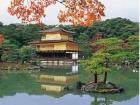 Далекая Япония